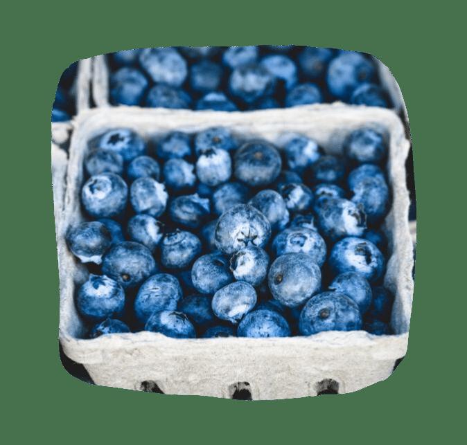 черника как источник лютеина